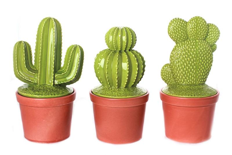 Dalani-cactus-Terracotta
