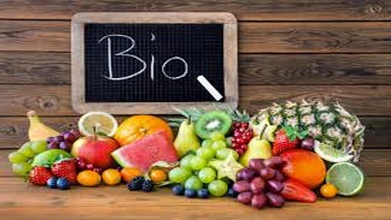 biologgico-800x450