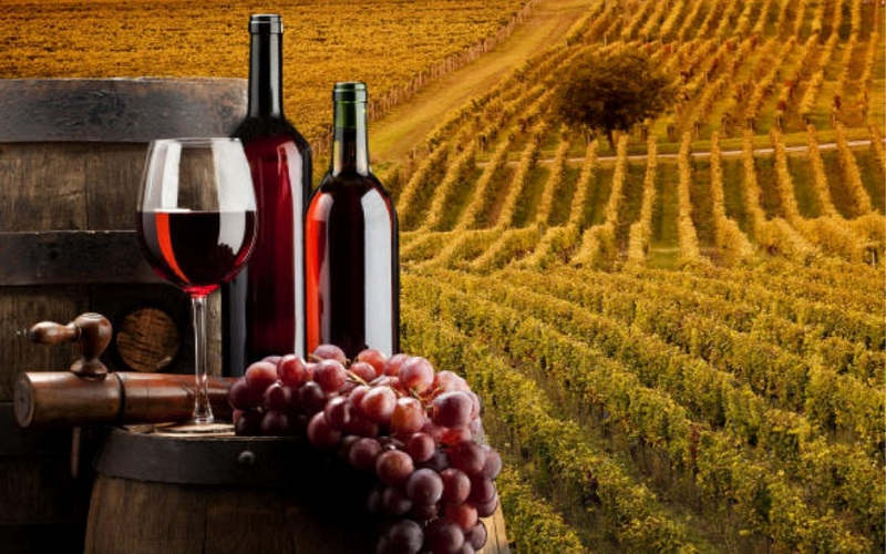 bkpam2101782-vino